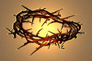 Jesus' Crown of thorns, symbol of penitential lifestyle. We are committed to living the Franciscan Rule of 1221. We aren't a Third Order but a Lay Catholic Association.